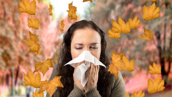 Otoño: alergias y limpieza