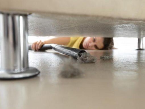 El polvo del hogar puede hacernos engordar