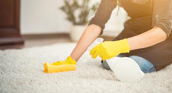 Como limpiar alfombras desde casa bclean republica dominicana